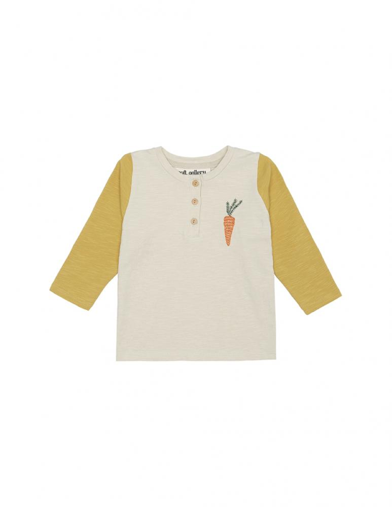 Fieldy Shirt Carrot