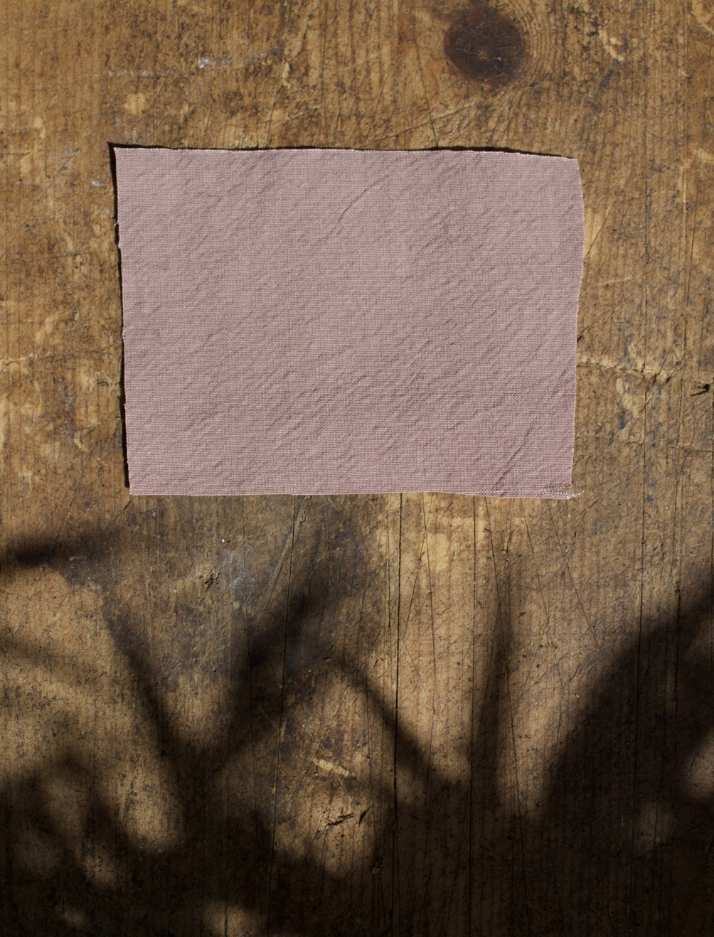 Fabric Swatches Rose Taupe