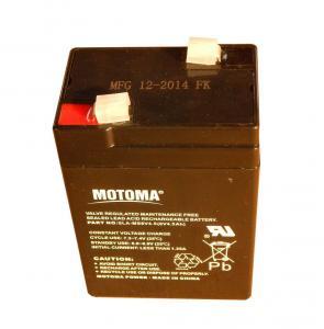 Batteri till ogrässpruta 10636