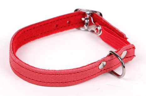 Katthalsband röd