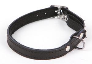 Kattungehalsband svart