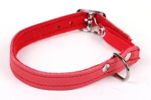 Kattungehalsband röd