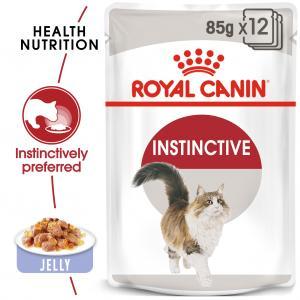 FHN Instinctive Jelly 85 g