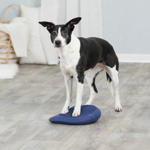 Dog Activity Balansdyna, 28x4x28cm