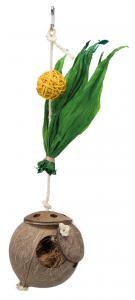 Cocosnöt på sisalrep, 35 cm