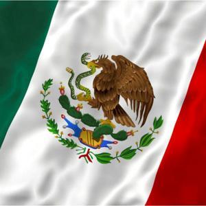 Mexikansk flagga, 18x10.5 cm