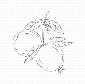 Gummiapa-Pomegranate på gren