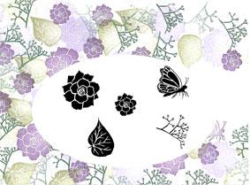 Majestix Begonia Garden