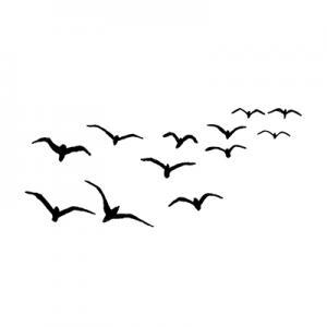 Lavinia Birds