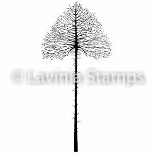 Lavinia Celestial Tree