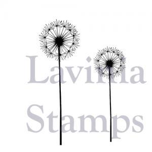Lavinia Fairy Dandelions