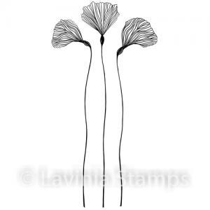 Lavinia Fairy Orchid Set
