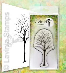 Lavinia Birch