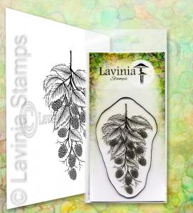 Lavinia Blackberry
