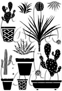 Collection Pots and Prickles