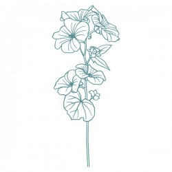 Mya- Bouquet