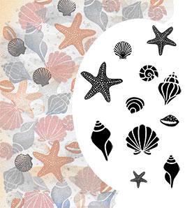 Majestix Starfish and Shells