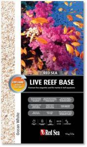 Live Reef Base White/Pink