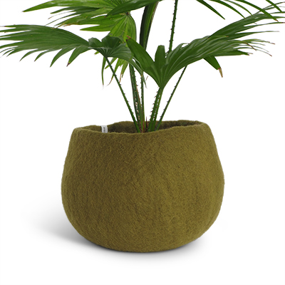 Medium size rounded flower pot in olive green made of wool.