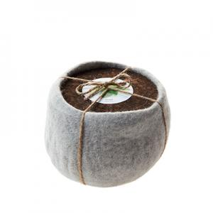 Life in a bag - Planter kit in a grey wool flower pot