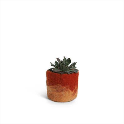 Small rust flower pot of wool with ombre effect.