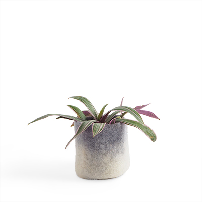 Small flower pot in concrete grey made of wool with ombre effect.