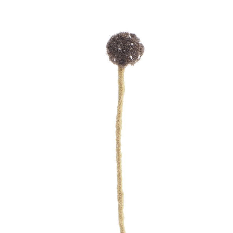 Cut flower made in wool with fuzzy brownish ball on the top.
