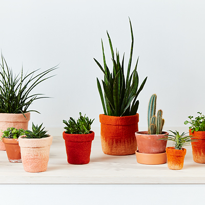 Flowerpots in different colors and sizes in terracotta hues.