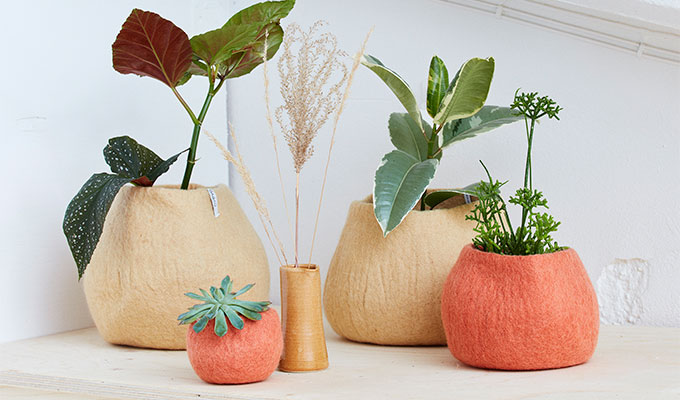 Green plants in wool pots in the colors sand and terracotta.