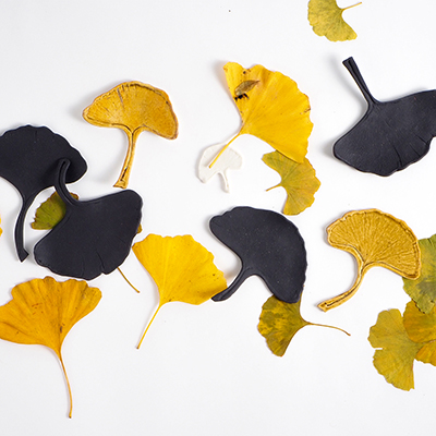 Handmade Ginkgo leaf in porclain in different colors - black, mustard and white.