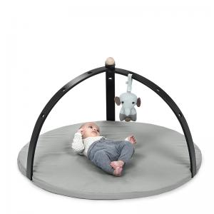 BabySpyder activity gym black