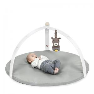 BabySpyder activity gym white