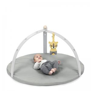 BabySpyder activity gym grey