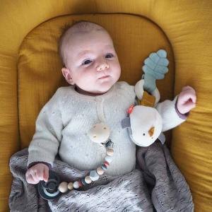 Teether Rattle Forest Friends