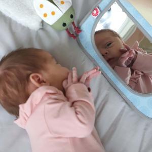 Grete grey mirror