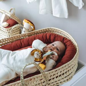 Baby Palm Leaves Changing Basket