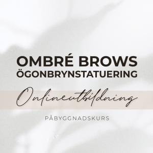 Ombré Brow Maskin Utbildning Online