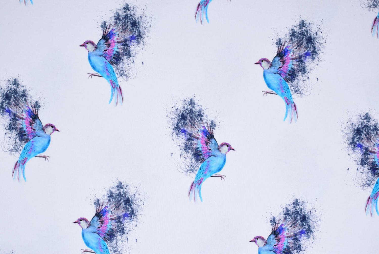 Påfågel på vit botten
