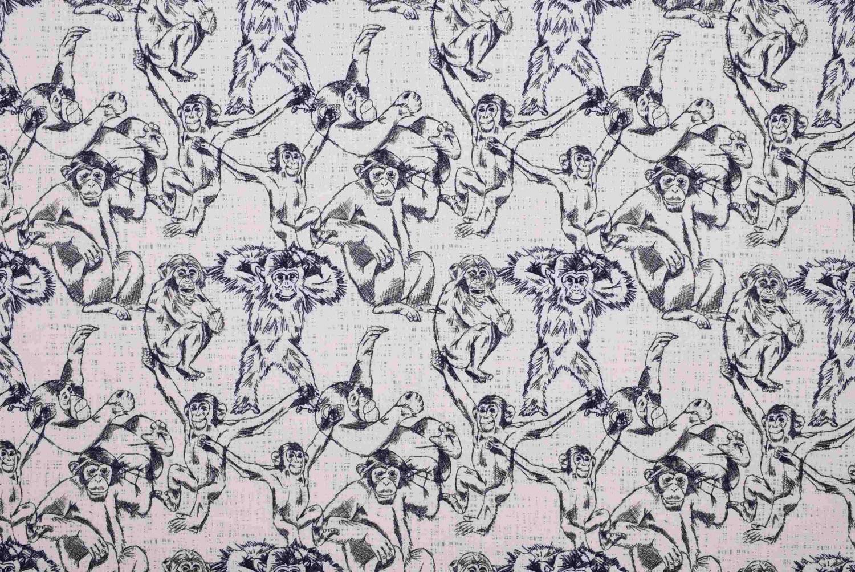 Chimpanser med rosa botten