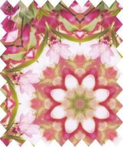 Rosa och grönt mönster