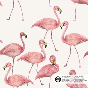 Flamingo på naturvit botten