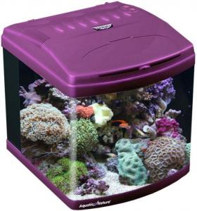 Aquatic Nature Evolution 37 L