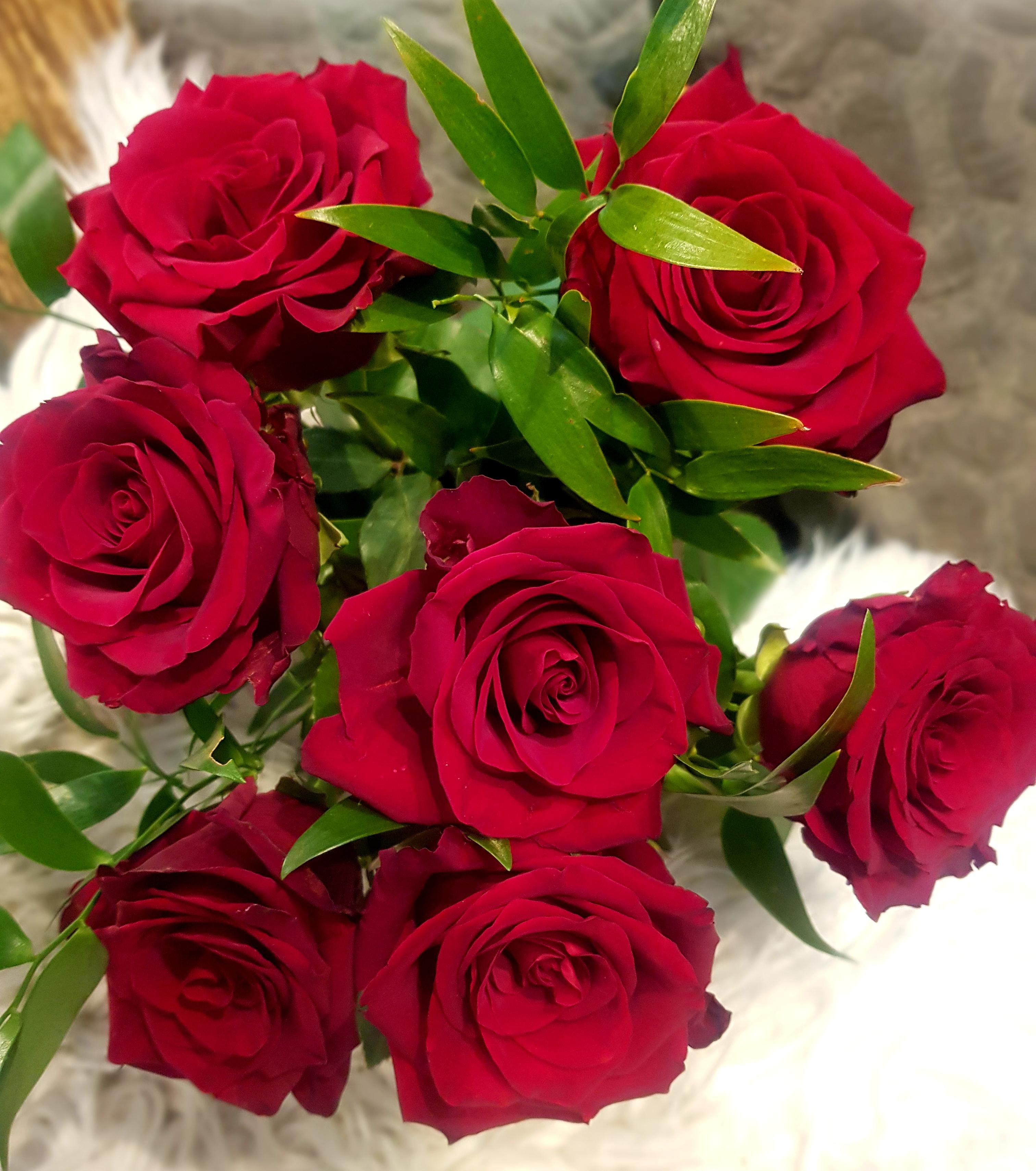 Röda rosor med grönt
