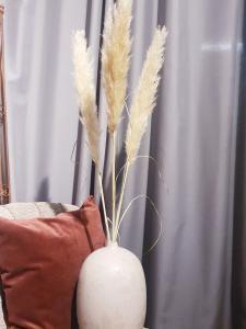 Pampas gräs med vas