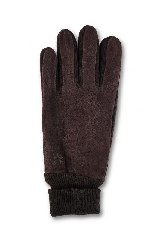 Darwin Glove Men