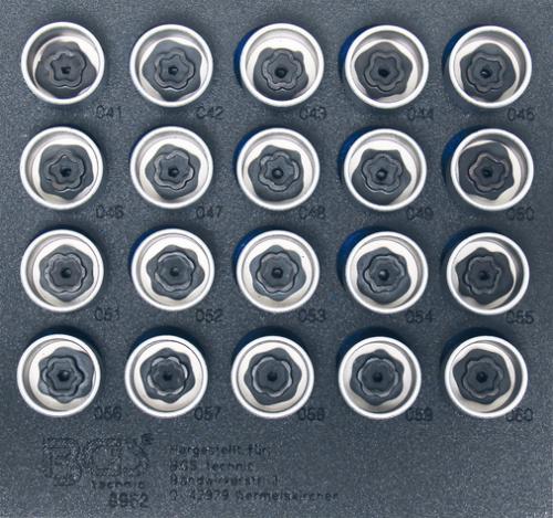 BGS Technic 8962 specialhylsor för BMW-låsbultar (20st)