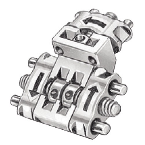 Bertoni three dimensional expansion screw