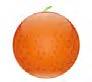 Forestadent Fruit Line