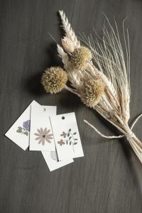 Tags i kartong - Ib Laursen (naturmotiv)
