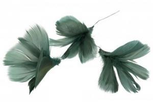 Fjädrar till riset, mörkgrön/blå (blomma)